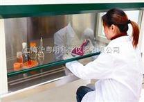 ZHJH-C1112B超淨工作台/上海智誠水平流起淨工作台(雙人