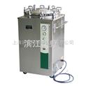 江阴滨江立式蒸汽灭菌器 LS-100LJ全不锈钢压力灭菌器(原LS-B100L)