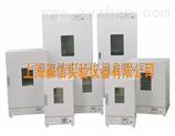 DGG-9030A不锈钢恒温干燥箱/立式电热鼓风干燥箱