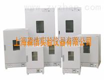 DGG-9140恒温电热鼓风干燥箱/不锈钢立式恒温鼓风干燥箱