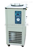 DLSB-10/30郑州长城科工贸低温冷却液循环泵DLSB-10/30为5L旋蒸降温