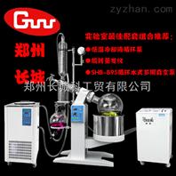 配套10L旋蒸用低温冷却液循环泵DLSB-20/30