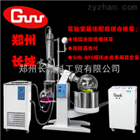 DLSB-20/30配套10L旋蒸用低温冷却液循环泵DLSB-20/30