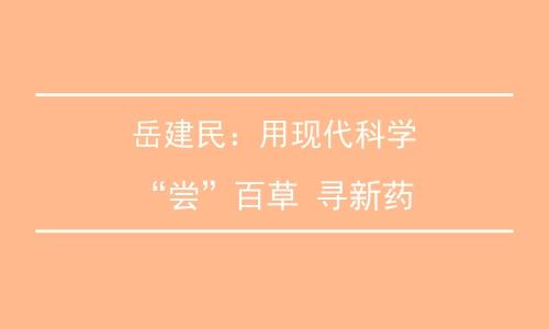 """岳建民:用现代科学""""尝""""百草 寻新药"""