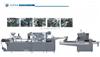 DPP-260TI枕式包装机联动线